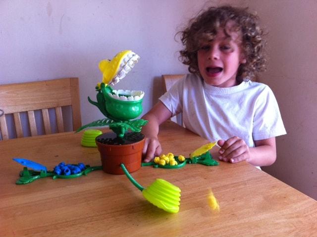 Flytrap game, flytrap