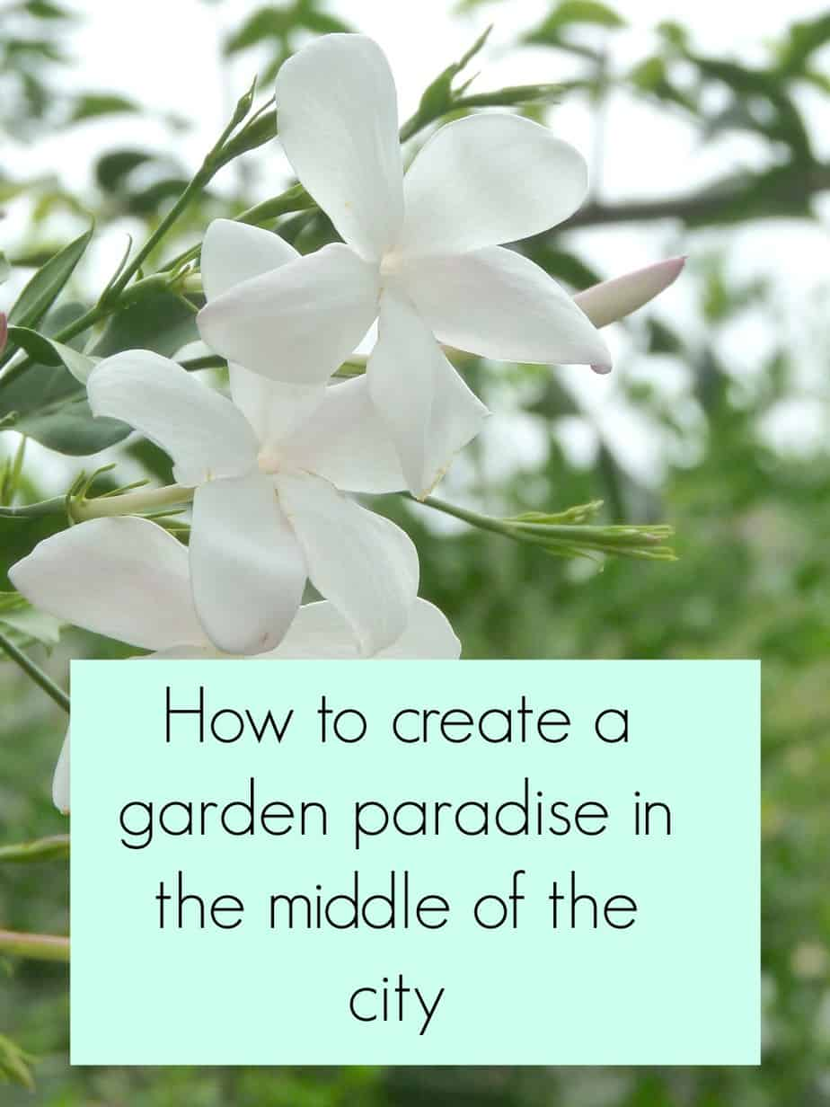 Garden in the city, if you are looking to create a garden in the city you need to make sure it works for you and your lifestyle. Hardy plants, tall grasses and minimal garden maintenance will all help