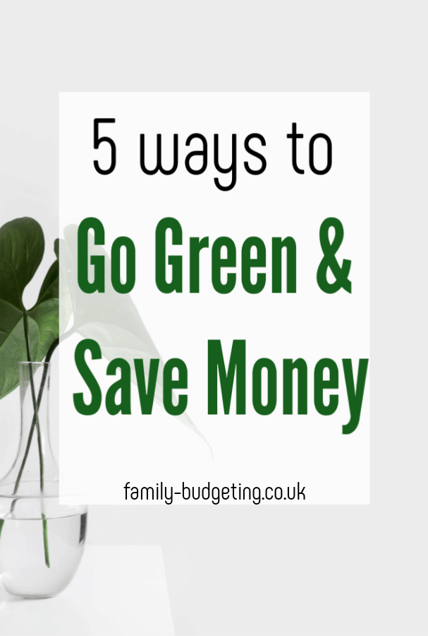 Ways to go green and save cash, 5 simple ways to live ore eco-friendly and save money in the process #ecothrifty #eco #greenliving #moneysaving #frugal #thrifty