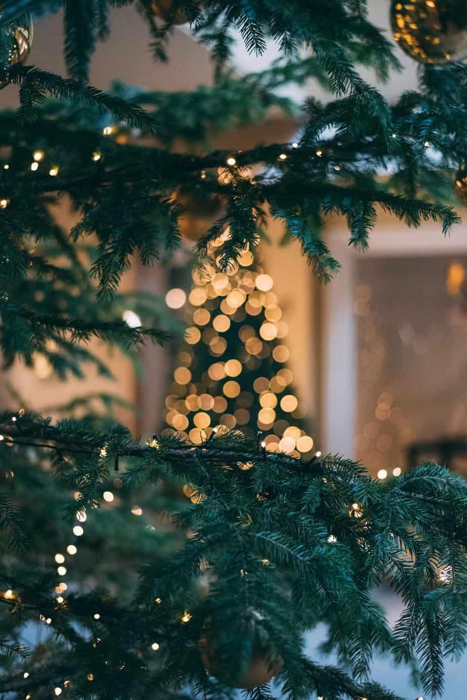 Cheapest Christmas Decor Ideas