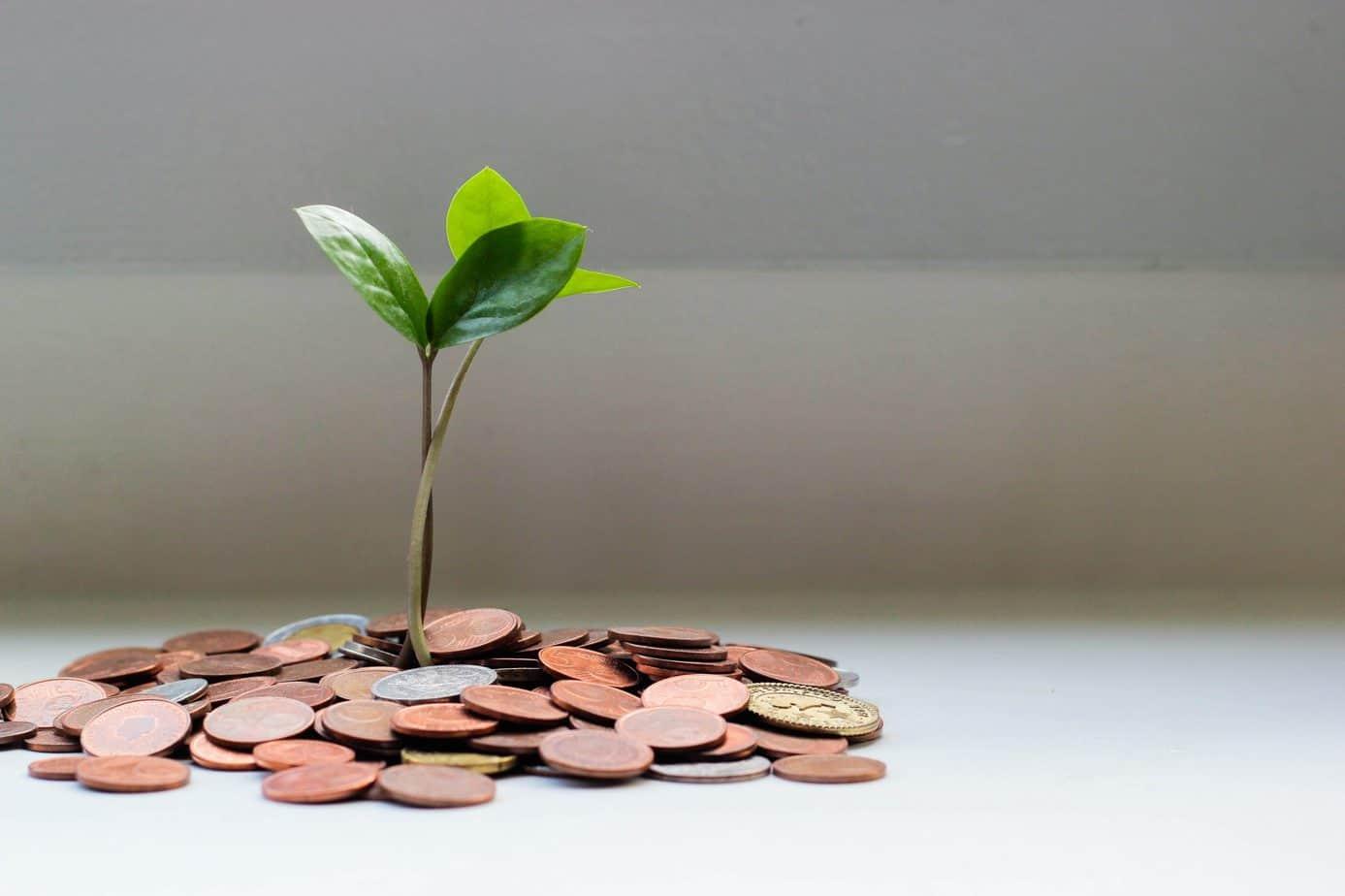Five Ways to Maximize Surplus Income